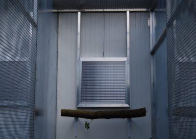 Vletové okno 50 x 50 cm
